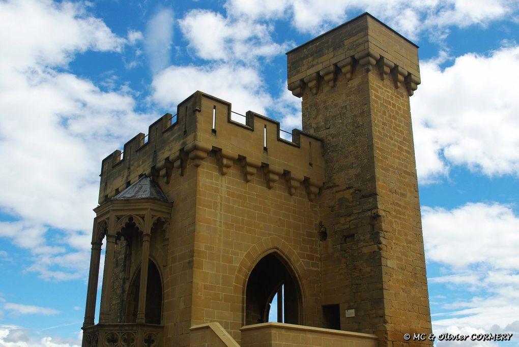 Château d'Olite...