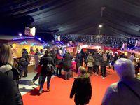 Une vingtaine d'enfants défavorisés de Villepinte ont pu profiter d'une soirée de cirque offerte par le club Rotary de Villepinte Expositions