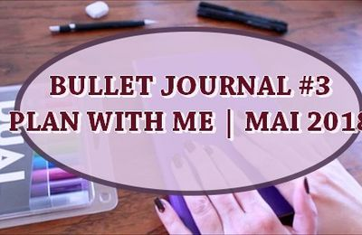 BULLET JOURNAL #3 |  PLAN WITH ME MAI 2018