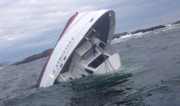 Canada - 5 morts et un porté disparu en allant observer des baleines au large de Vancouver