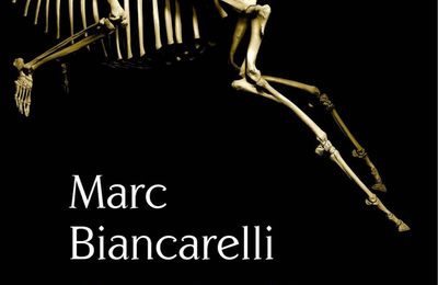 Orphelins de Dieu-Marc Biancarelli