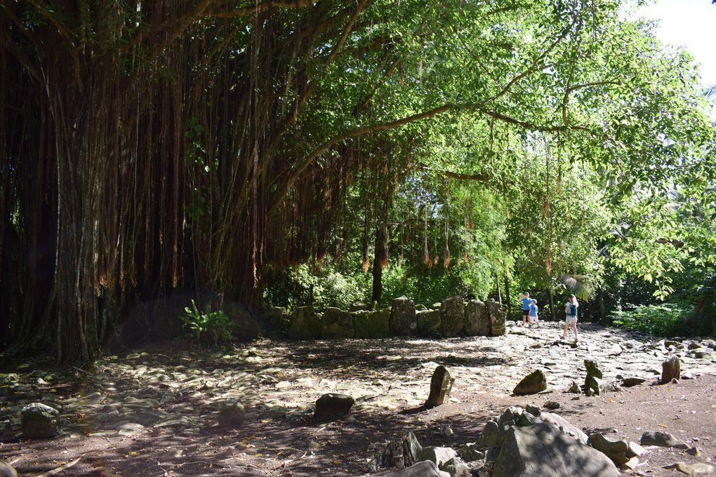 Huahine en famille ~ Polynesie Française