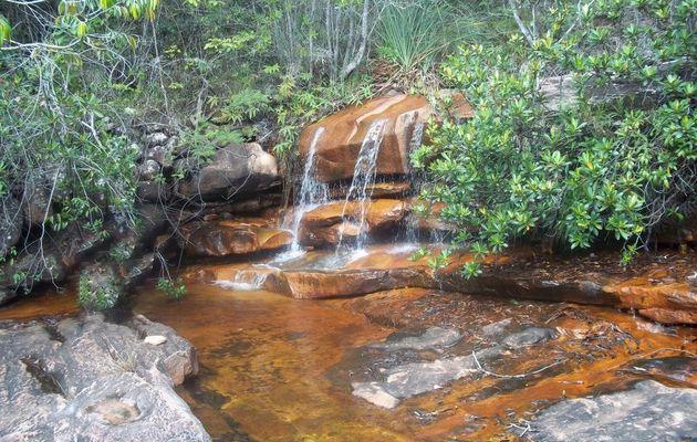 La cascade de la Casa Dom Inacio : outil d'éveil et de guérison spirituel
