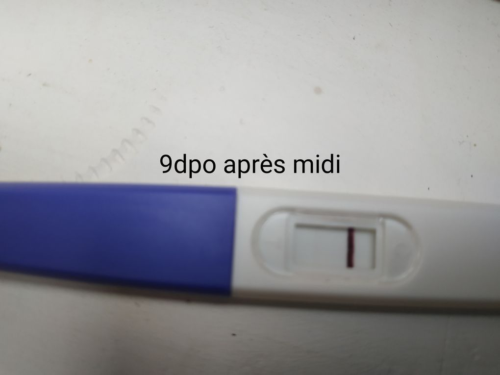 evolution des tests de grossesse de 8dpo à 20dpo