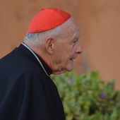 Accusé d'abus sexuels, l'ex-cardinal Theodore McCarrick rendu à l'état laïc par le Vatican