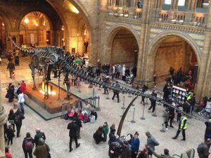 Des musées/visites insolites à Londres