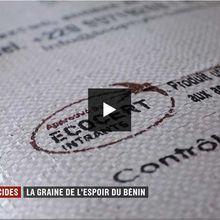 Huile de margousier (neem) et journal de 20 heures de France 2 : désolant !
