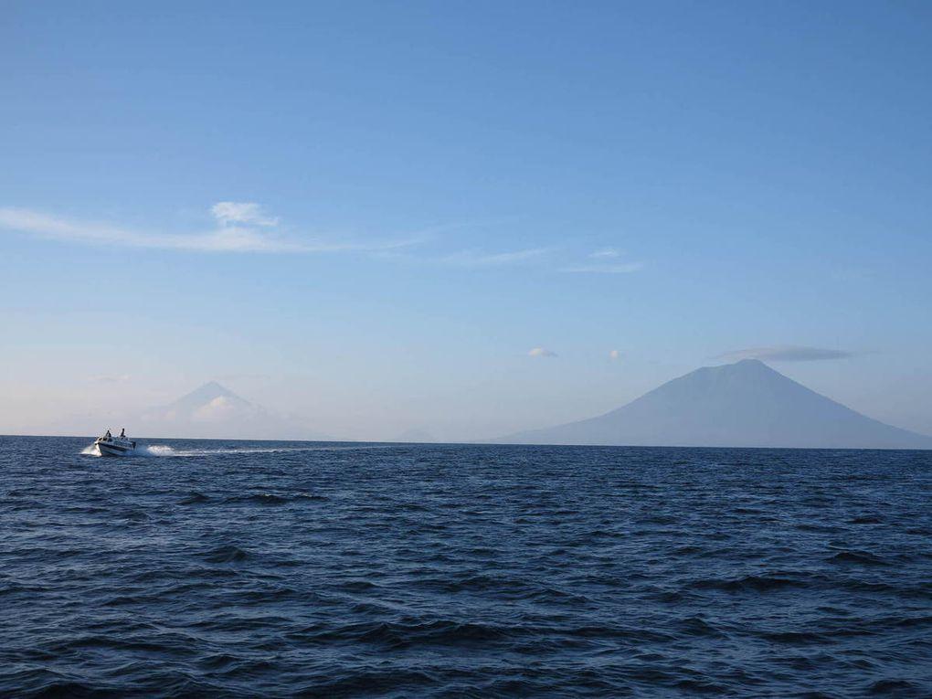 petit café sur le port de Jailolo au matin, puis vedette jusqu'à Ternate.
