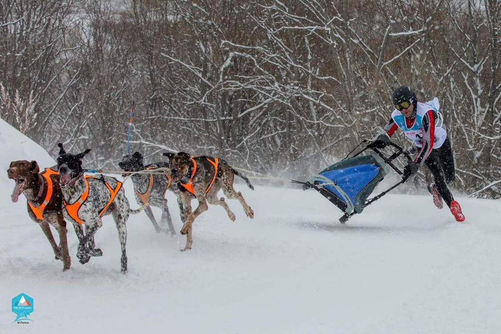 Bessans a accueilli les Mondiaux de traineau à chiens et skidog