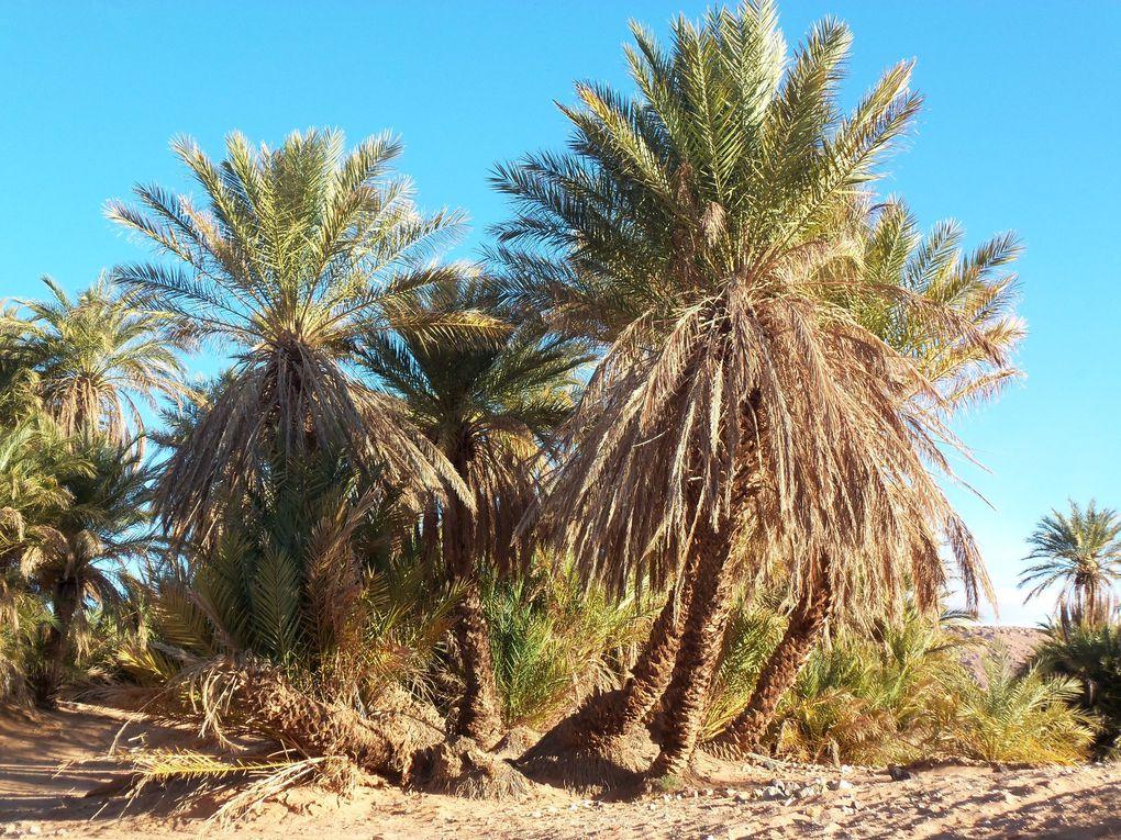 Maroc mars 2013