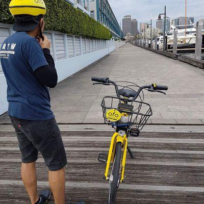 Jalan-jalan Gratis Dengan Sepeda Ofo di Sydney
