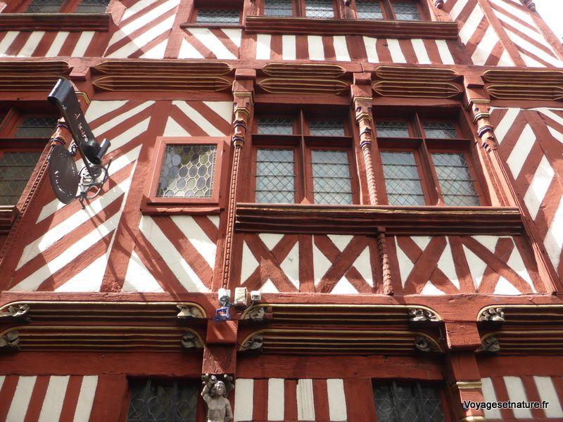 Visite de Rennes (35)