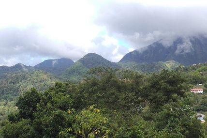 Panoramique Morne Vert