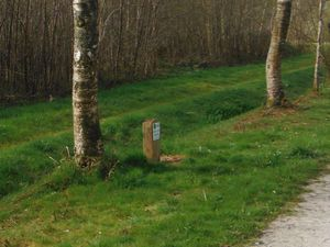 En roulant vers la gare de Saint-Lubin ; le lièvre vu uniquement par Annick se dirigeant vers le lieu de rendez-vous