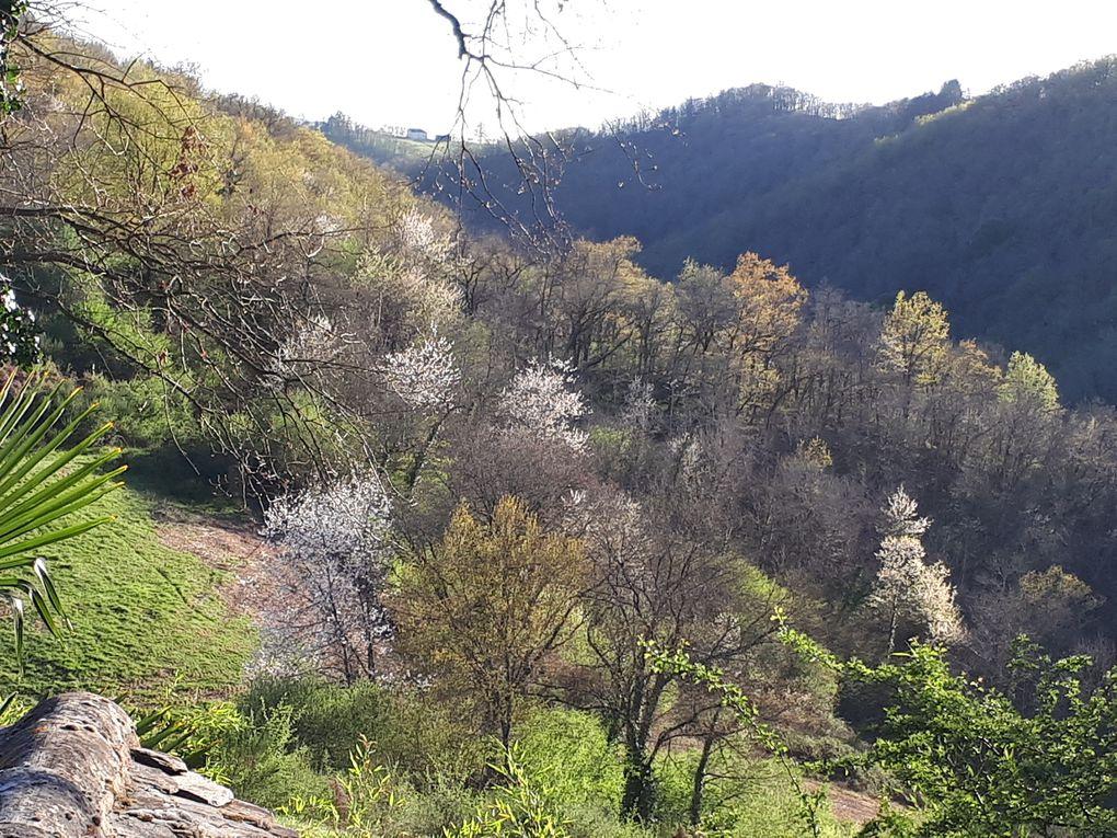 le parc, la vue vers la vallée ou la rivière, les coins détente ou repas