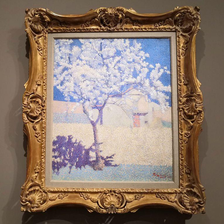 Achille Laugé (1861-1944), l'Arbre en fleur, 1893, Huile sur toile