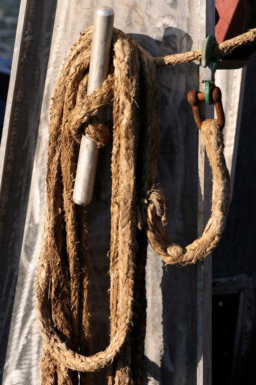 Ambiance Marine - Photos Thierry Weber Photographe La Baule Guérande