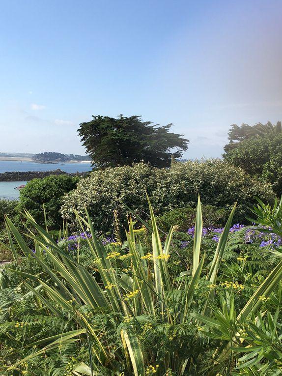Bonne année 2021, vue de l'île de Batz. Bonne année 2021, vue depuis Paris…