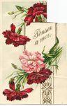 Vieilles cartes postales privées de leurs timbres (10)