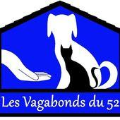 Présentation Les vagabonds du 52 - COURIR POUR LES ANIMAUX