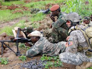 U.S. Training Elite Antiterror Troops in Four African Nations (New York Times)
