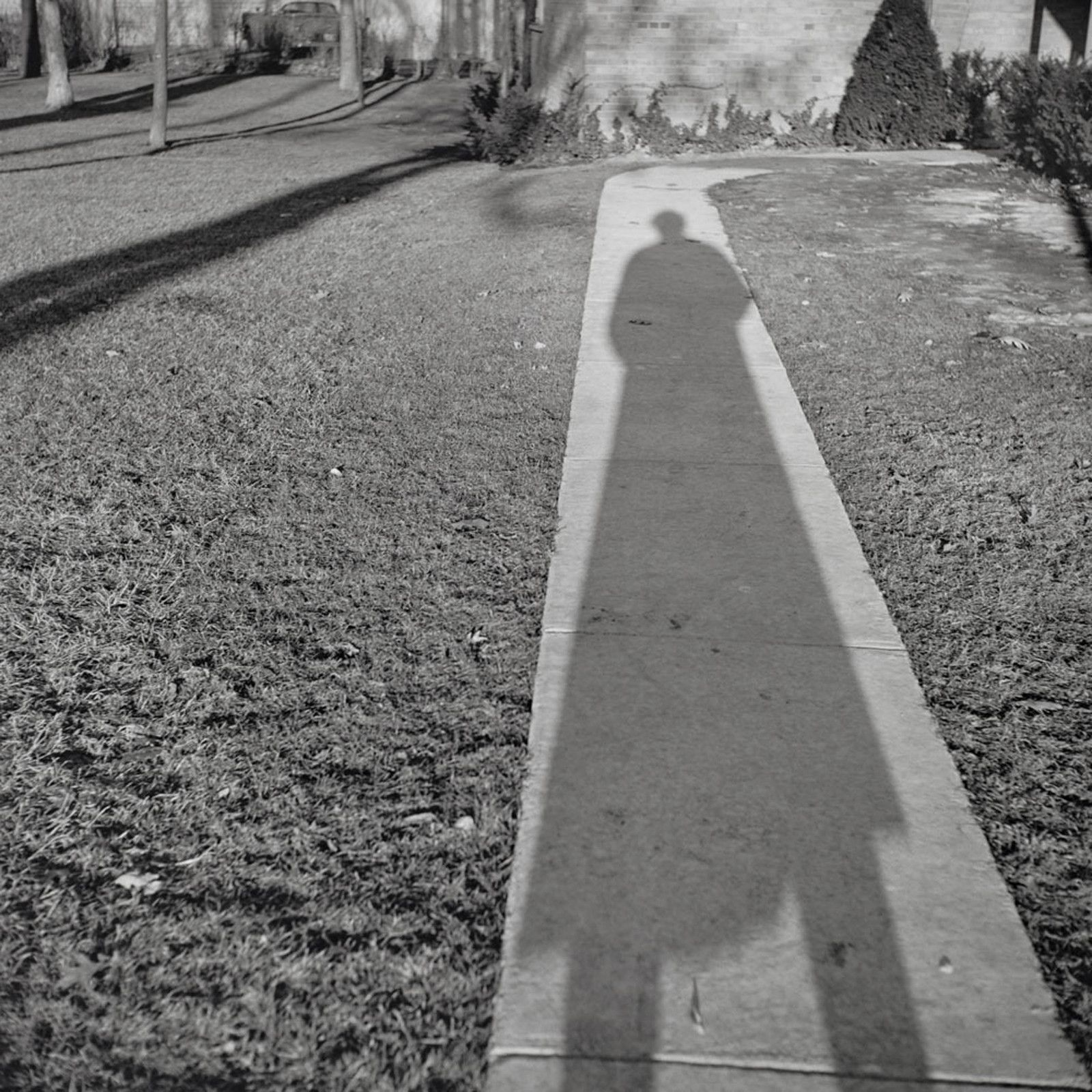 """Self-portrait, Chicago area"", 1956 de Vivian MAIER - Courtesy Les Douches la Galerie Paris"