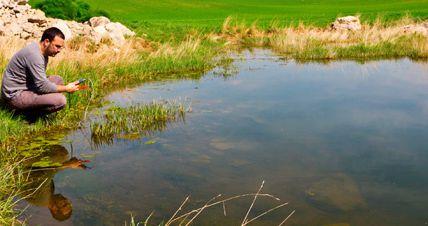 L'état des eaux inquiète l'Europe, le principe pollueur/payeur galvaudé jusque là, est enfin plébiscité.