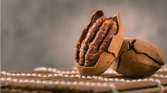 Test - Eliquide - Pecan Custard gamme Mukkies de chez Mukk Mukk