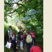 La nature à l'œuvre ce week-end à Accous pour les Phonies Bergères