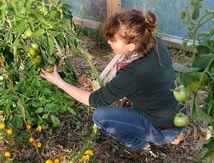 Dernières récoltes pour Delphine Barbaux