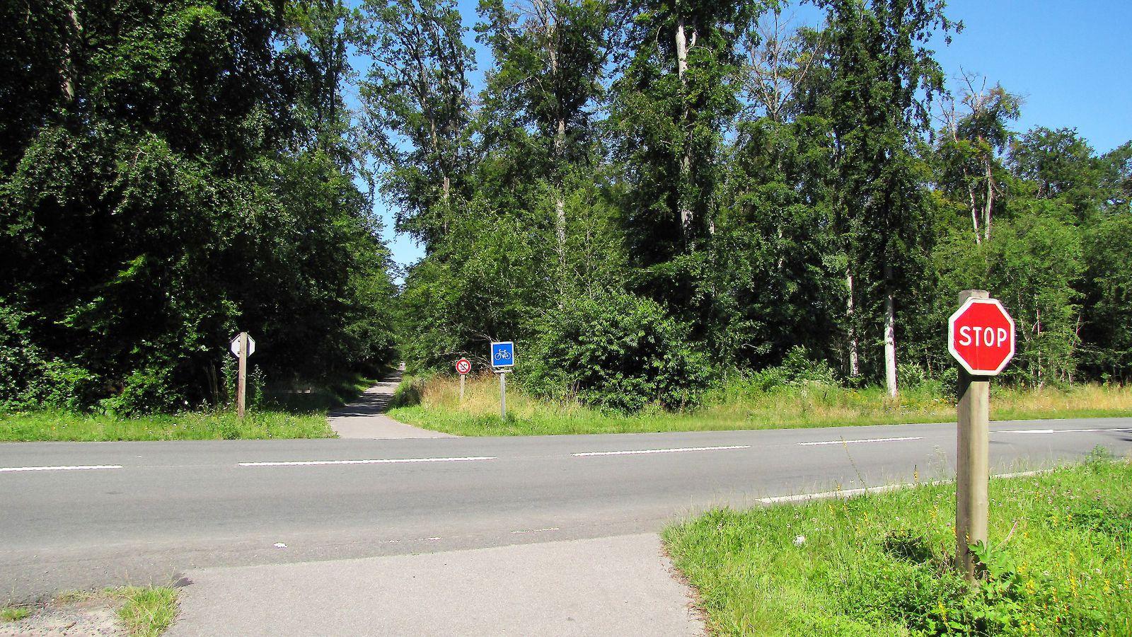 carrefour_Route de la Mare aux Canes_D130
