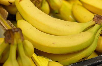 """""""Gardons la banane"""", documentaire inédit ce soir sur France 5"""