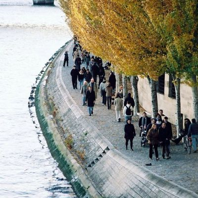 Paris en automne (French for beginners - Fle A1/A2)