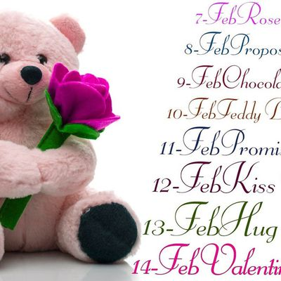 Valentine Day and Teddy