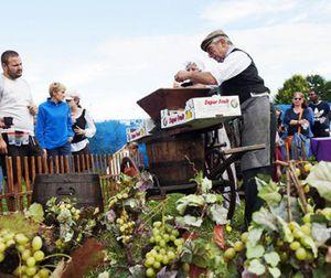 Fête des jardins 2015 à Aulnay-sous-Bois