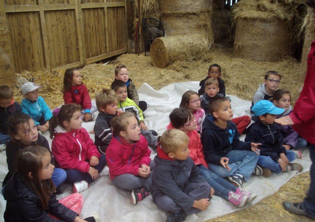 Sortie pédagogique au Val de Bures