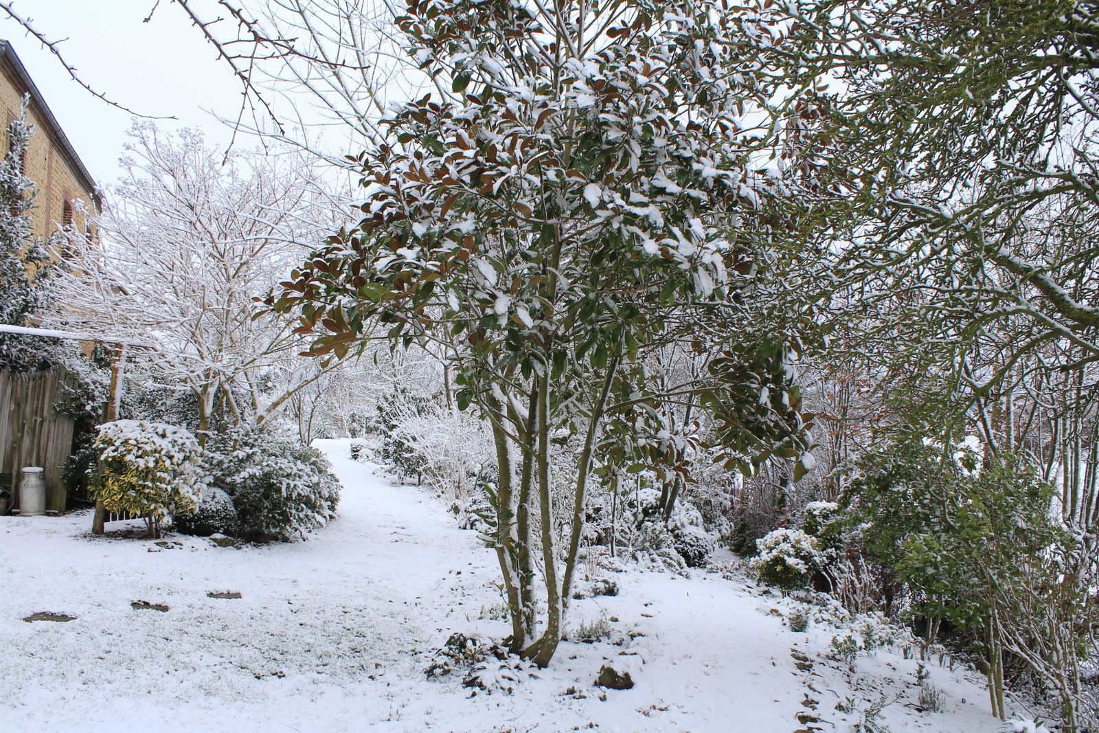 Yes ,il neige, le bel hiver 2021