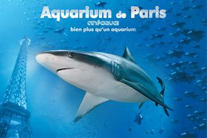 A la découverte de l'Aquarium de Paris !