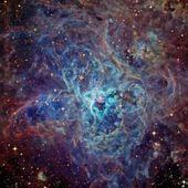 Cosmos . Jacques Viallebesset