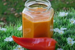 PUREE DE PIMENT (thermomix)