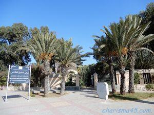 Agadir (Maroc en camping-car)