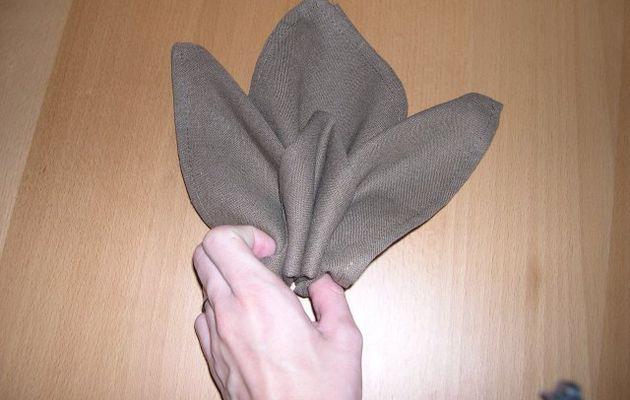 Pliage de serviette : L'iris