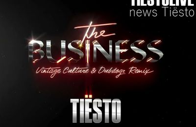 Tiësto - The Business (Vintage Culture & Dubdogz Remix)