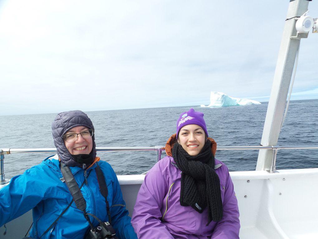 3 h de bateaux à la chasse aux icebergs