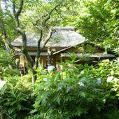 La maison dans les bois - 1/4 - RAHAR