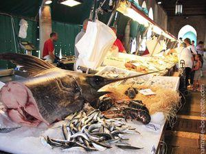 Le marché au poisson / Au détour d'une rue