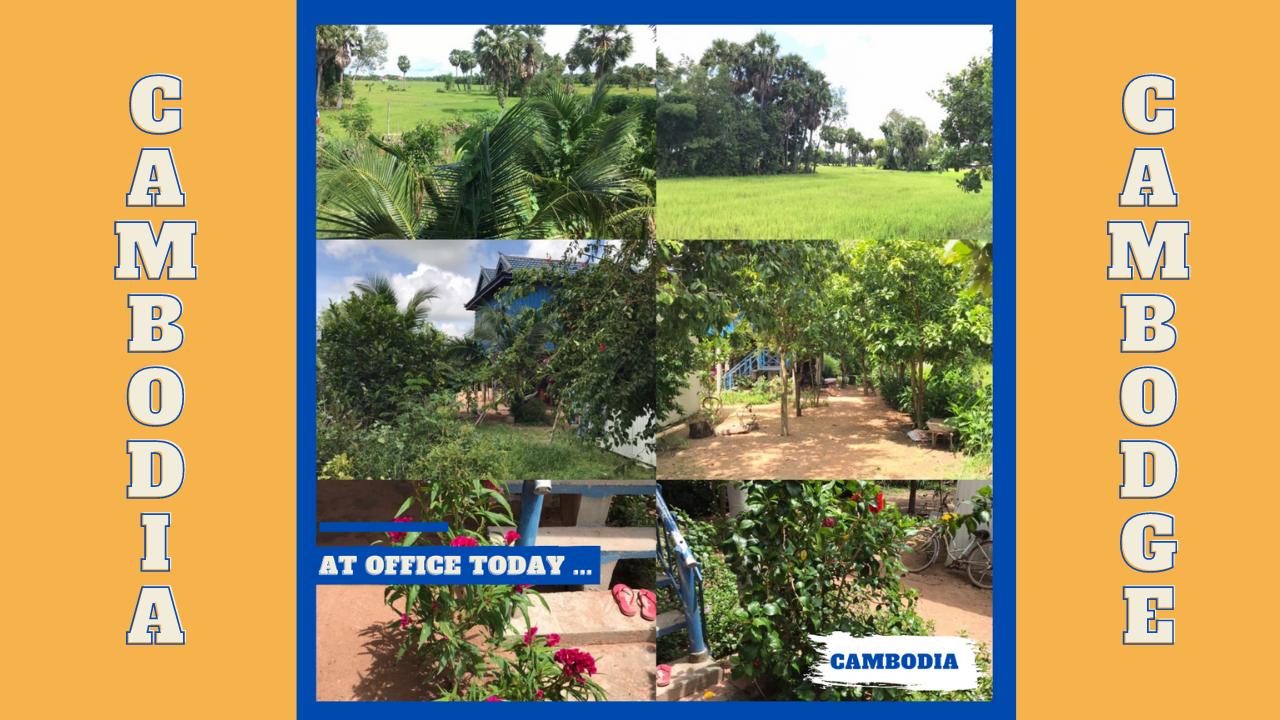 Ma nouvelle vie au Royaume du Cambodge depuis 2017 ...