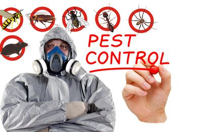 How can pest control satisfy Vancouver customers' expectations?