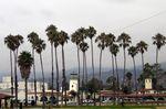 ETE 2005 : Jour 12 / Côte Pacifique Californienne (suite)