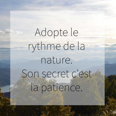 2 minutes de jolies citations sur la Nature